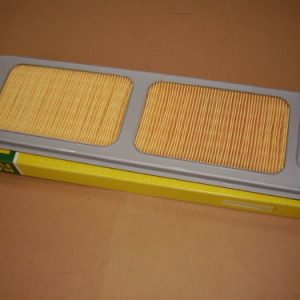 RS1600 Replacement Air Filter